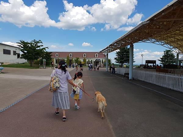 日本栃木県那須どうぶつ王国:レンタル犬 (7).jpg