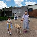 日本栃木県那須どうぶつ王国:レンタル犬 (9).jpg