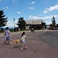 日本栃木県那須どうぶつ王国:レンタル犬 (10).jpg