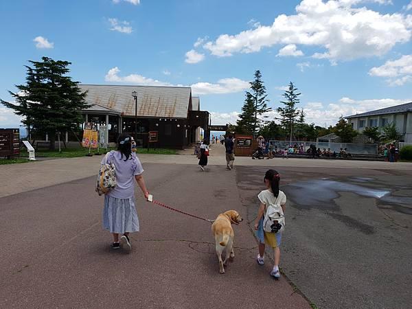 日本栃木県那須どうぶつ王国:レンタル犬 (11).jpg
