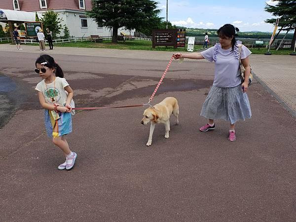 日本栃木県那須どうぶつ王国:レンタル犬 (15).jpg