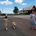 日本栃木県那須どうぶつ王国:レンタル犬 (16).jpg