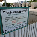 日本栃木県那須どうぶつ王国:レンタル犬 (20).jpg
