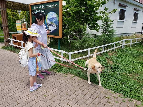 日本栃木県那須どうぶつ王国:レンタル犬 (25).jpg