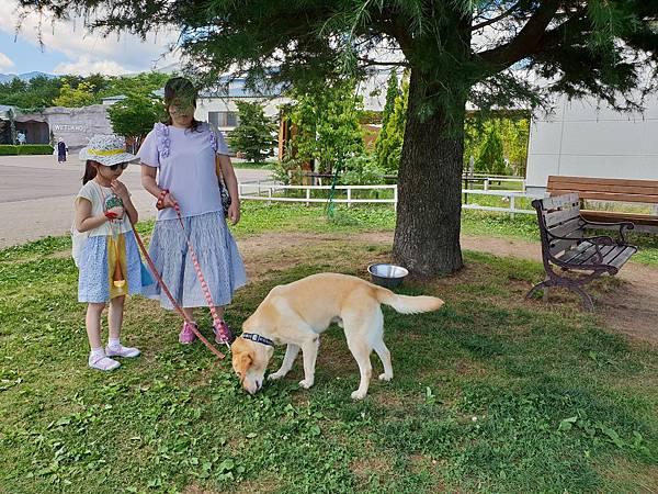 日本栃木県那須どうぶつ王国:レンタル犬 (27).jpg