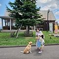 日本栃木県那須どうぶつ王国:レンタル犬 (31).jpg