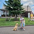 日本栃木県那須どうぶつ王国:レンタル犬 (32).jpg