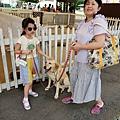 日本栃木県那須どうぶつ王国:レンタル犬 (34).jpg