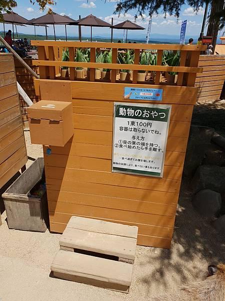 日本栃木県那須どうぶつ王国:カピバラの森 (3).jpg