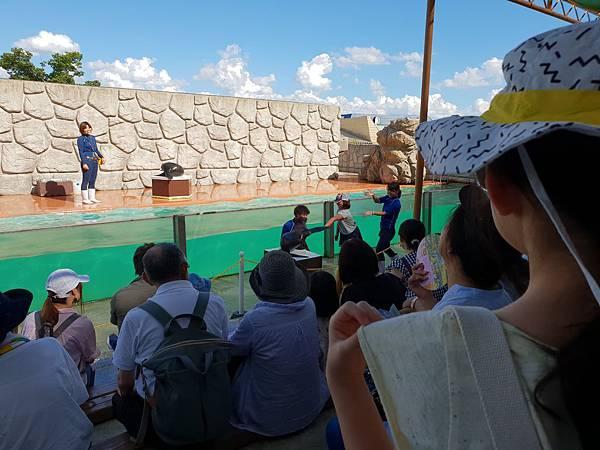 日本栃木県那須どうぶつ王国:アクアステージ (4).jpg
