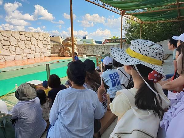 日本栃木県那須どうぶつ王国:アクアステージ (14).jpg