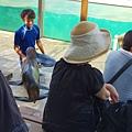 日本栃木県那須どうぶつ王国:アクアステージ (22).jpg