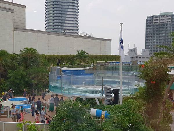 日本東京都Sunshine City:sunshine aQuarium (70).jpg