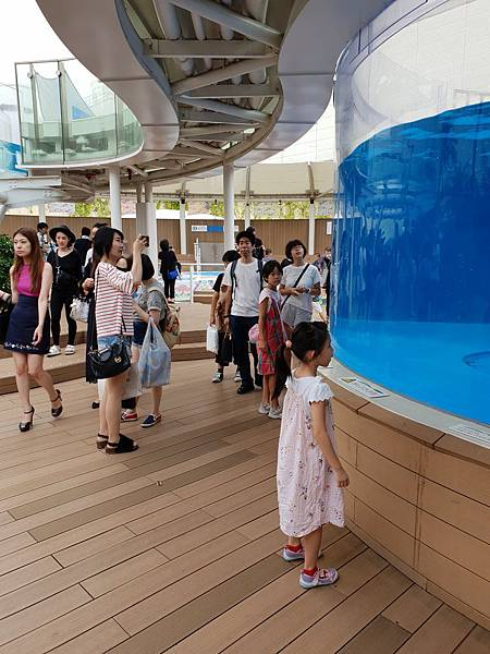 日本東京都Sunshine City:sunshine aQuarium (88).jpg
