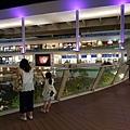亞亞的川崎逛街 (13).jpg