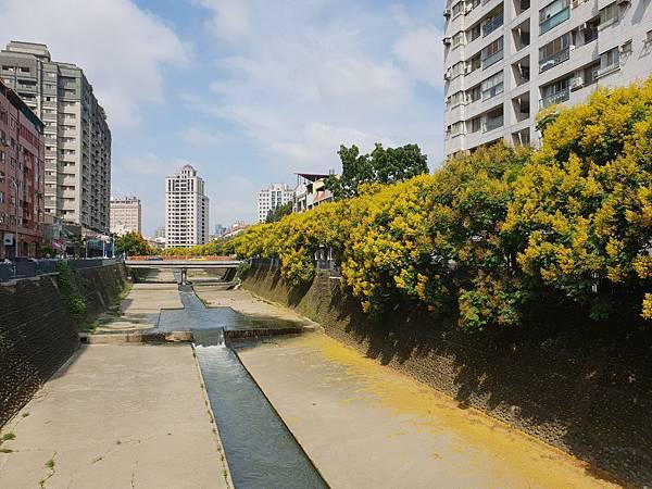台中市麻園頭溪河川綠能生態水岸 (7).jpg