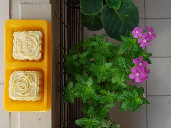手作綠豆沙冰糕 (1).jpg