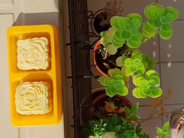 手作綠豆沙冰糕 (3).jpg