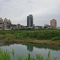 亞亞的景美溪流域 (16).jpg