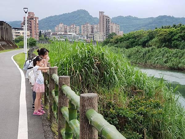 亞亞的景美溪流域 (13).jpg
