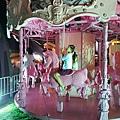 台中市粉紅樂園 (17).jpg