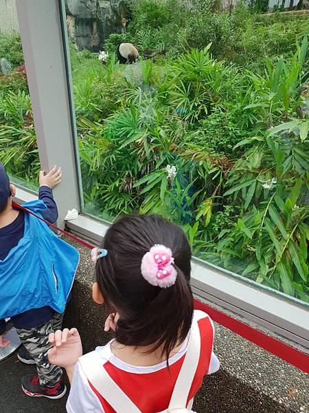 亞亞的動物園家庭日 (2).jpg
