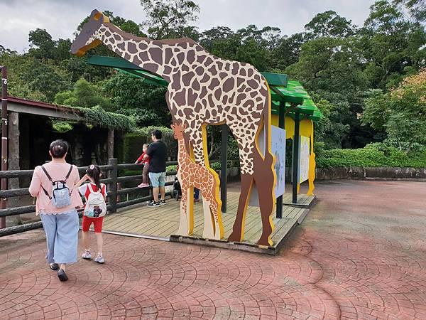 亞亞的動物園家庭日 (6).jpg