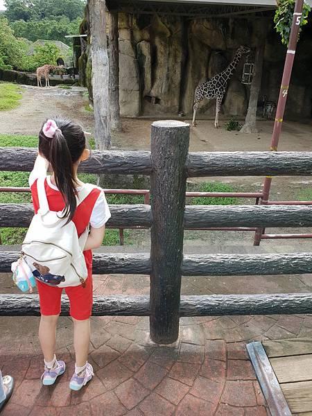 亞亞的動物園家庭日 (9).jpg