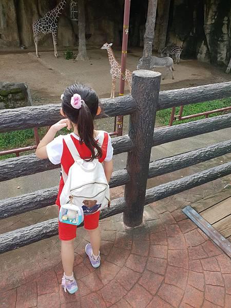 亞亞的動物園家庭日 (10).jpg