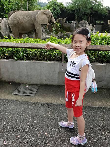亞亞的動物園家庭日 (24).jpg