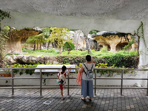 亞亞的動物園家庭日 (33).jpg