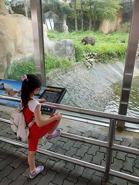 亞亞的動物園家庭日 (36).jpg