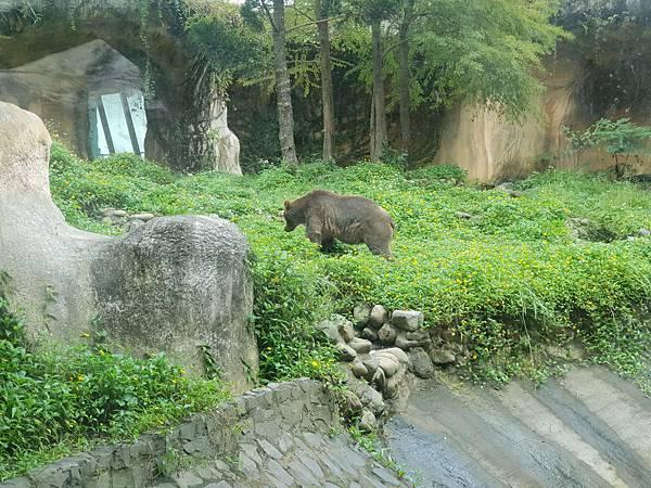 亞亞的動物園家庭日 (37).jpg
