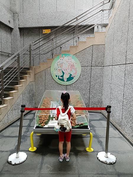 亞亞的動物園家庭日 (53).jpg
