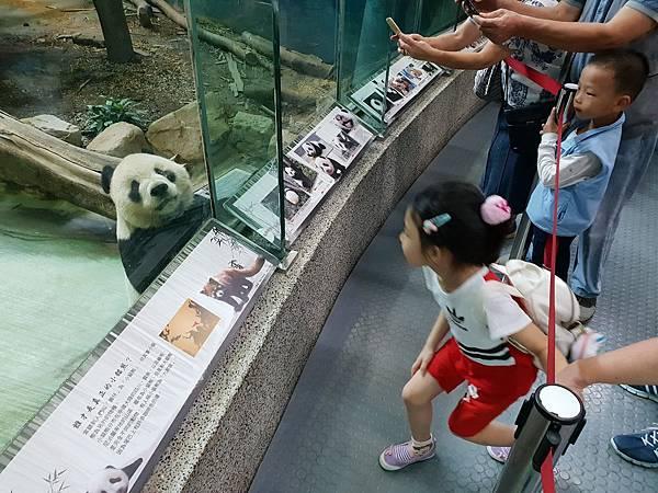 亞亞的動物園家庭日 (58).jpg