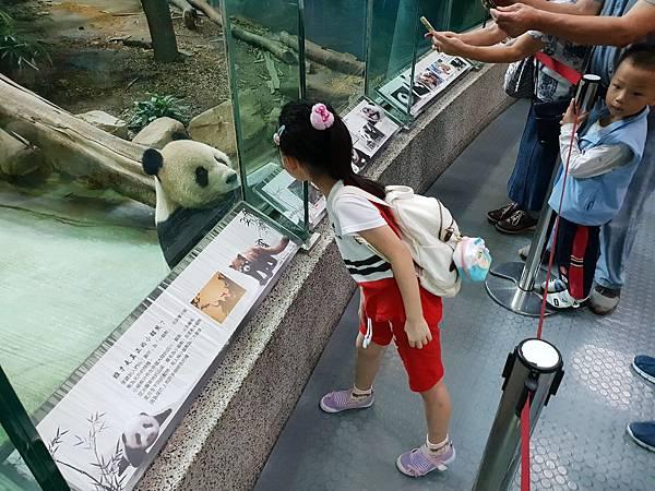 亞亞的動物園家庭日 (59).jpg