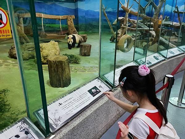 亞亞的動物園家庭日 (64).jpg