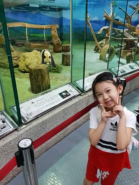 亞亞的動物園家庭日 (65).jpg