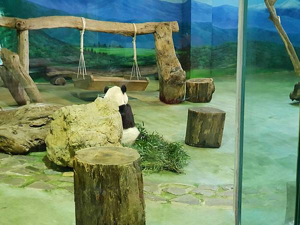 亞亞的動物園家庭日 (66).jpg