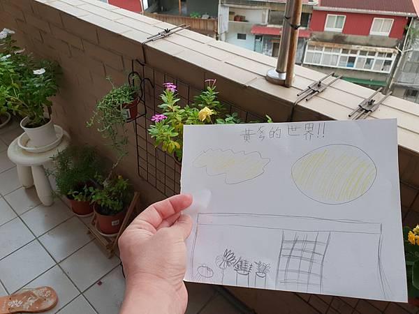 亞亞的陽台小花園寫生 (10).jpg