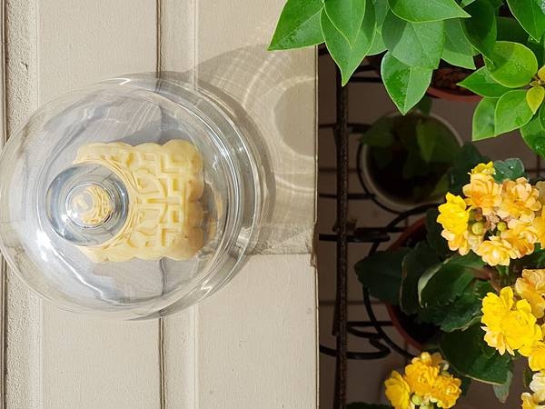 手作綠豆沙冰糕2 (3).jpg
