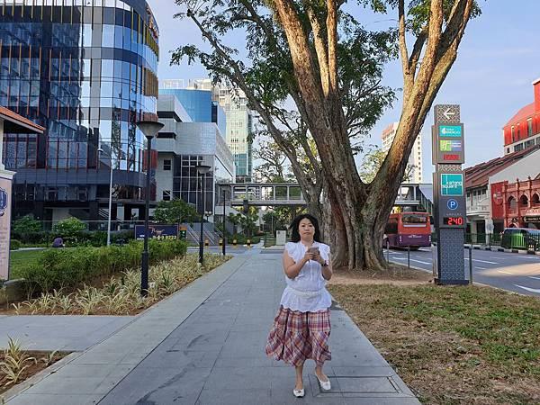 亞亞的新加坡加東散步 (41).jpg