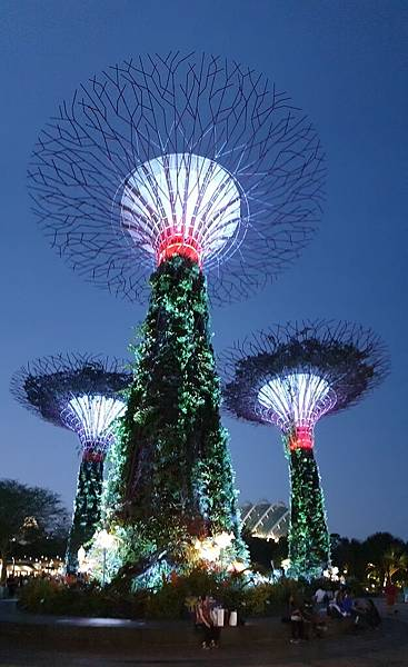 新加坡Gardens by the Bay (2).jpg