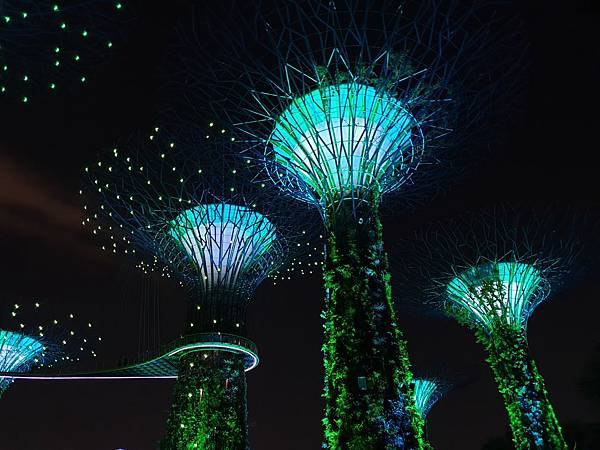 新加坡Gardens by the Bay (12).jpg