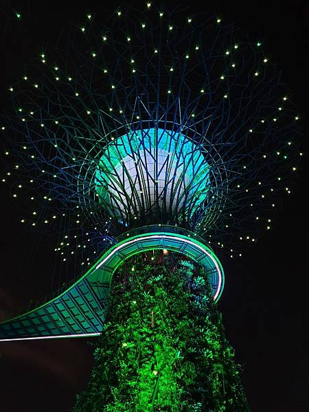 新加坡Gardens by the Bay (14).jpg