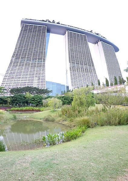 新加坡Gardens by the Bay (24).jpg