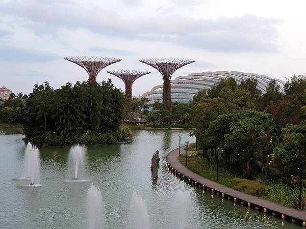 新加坡Gardens by the Bay (31).jpg