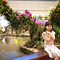 亞亞的樟宜機場 (1).jpg