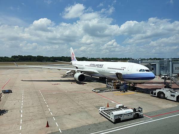 亞亞的樟宜機場 (28).jpg