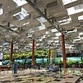 亞亞的樟宜機場 (31).jpg